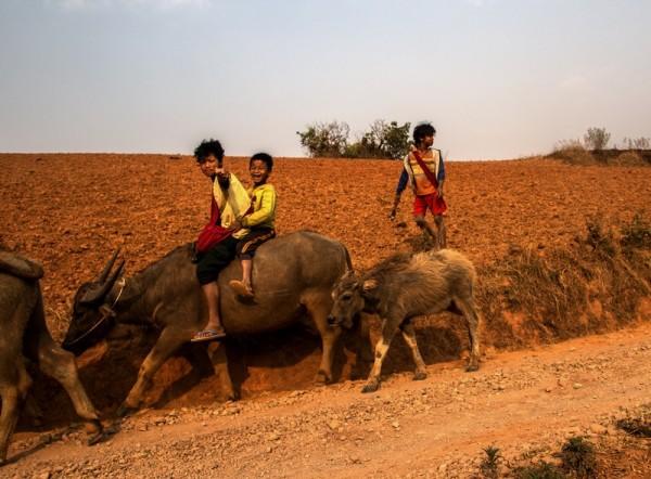 Dzieci wracające z pola do domu